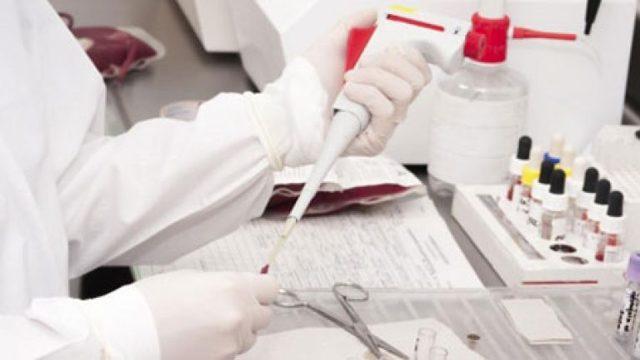 Биохимический анализ крови: расшифровка у взрослых