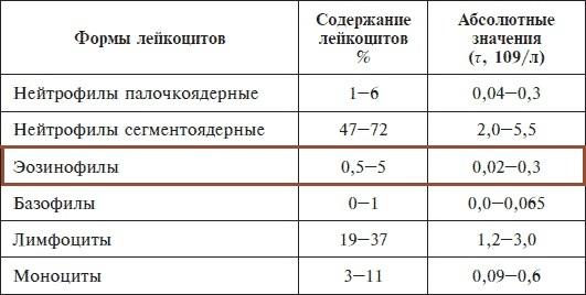 Эозинофилы повышены: патология или вариант нормы