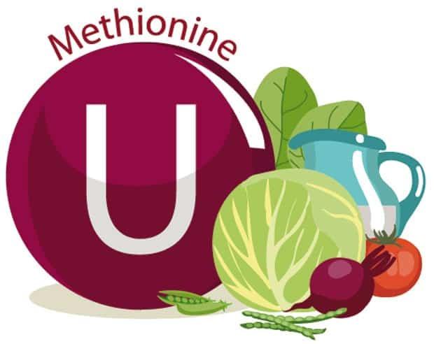 L-Метионин Аминокислота: Польза и инструкция по применению