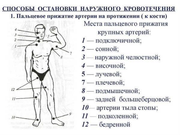Правила наложения жгута: этапы, особенности, контроль