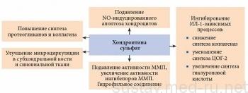 Терафлекс Адванс: состав, противопоказания, инструкция