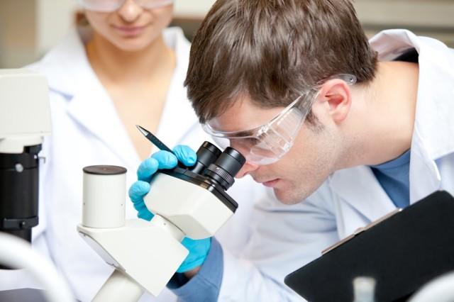 Общий анализ крови - лейкоциты: норма и причины отклонения от нормы
