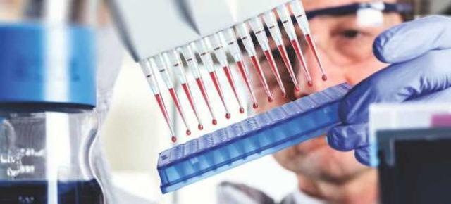 Гематокрит повышен – что это значит? Что такое гематокрит в крови – норма