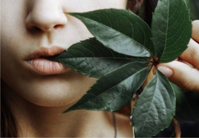 Заеды в уголках рта - причины и лечение лекарственными и народными средствами