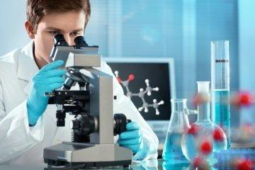 Анализ на СОЭ: норма и патологии. Что такое СОЭ и что показывает повышенная и пониженная скорость оседания эритроцитов?