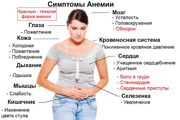 Гемоглобин у женщин – норма, повышенный и низкий гемоглобин у женщин