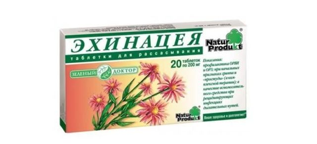 Эхинацея: инструкция по применению для таблеток и экстрактов, в чем разница между капсулами и каплями