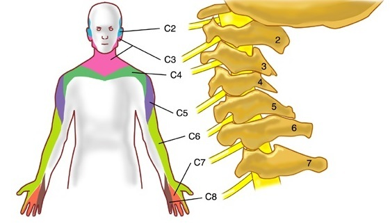 Защемление шейной артерии: причины, симптомы и способы лечения