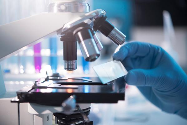 Какие анализы назначает венеролог на сифилис и другие инфекции.
