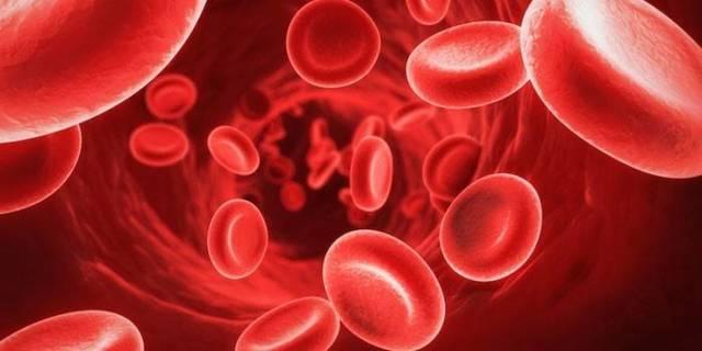 Анемия. Причины, виды, симптомы и лечение
