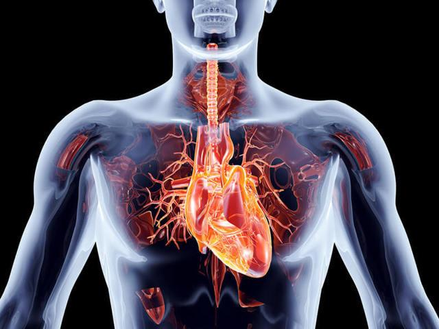 Высокое сердечное давление — причины и лечение
