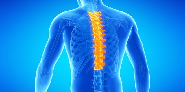 Остеохондроз грудного отдела позвоночника – причины, симптомы и лечение