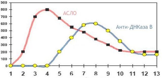 Почему в крови повышен антистрептолизин О? Расшифровка анализа, норма и причины отклонений